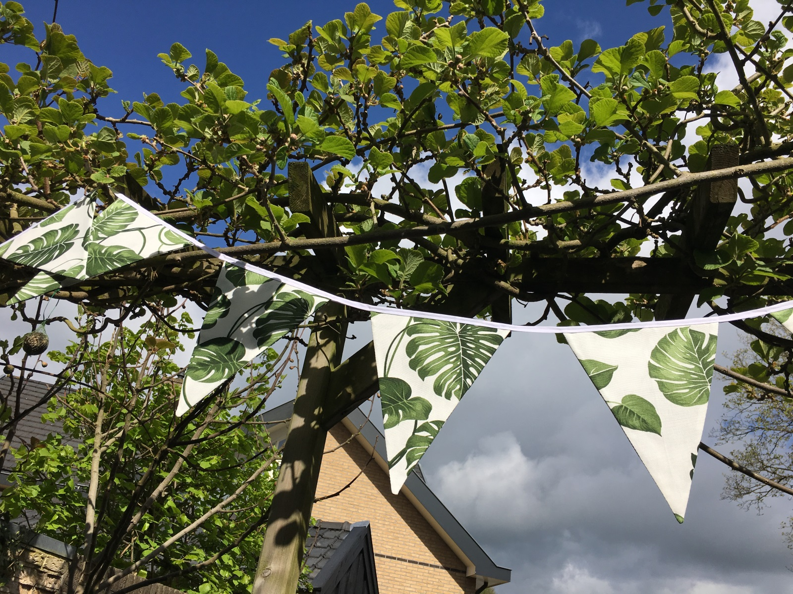 Slinger Green Leaves1